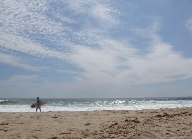 Montauk surfer:The Fashion Informer