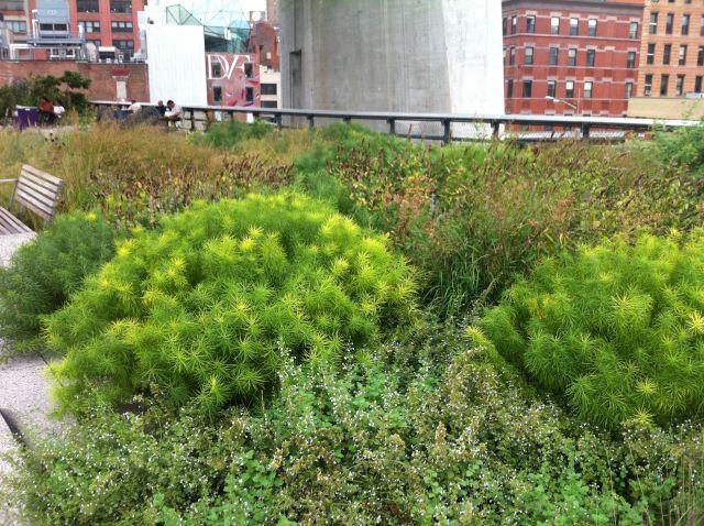 11. High Line