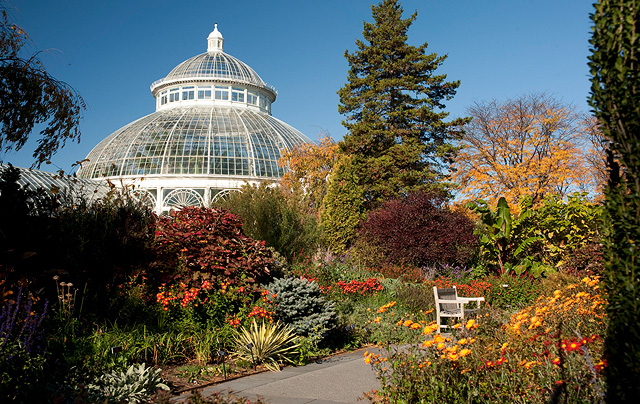NY Botanical Garden-Fall-in-the-Perennial-Garden-640x404