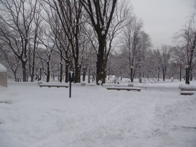11. Central Park snowstorm by The Fashion Informer:Lauren David Peden