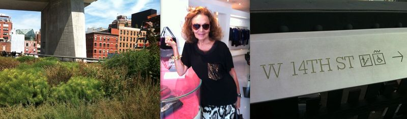 3b. Diane von Furstenberg and the High Line photos by Lauren David Peden:The Fashion Informer